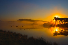 Commended (ericwyllie) Tags: morning mist sunshine weather sunrise dawn scotland eric time kilmacolm gloaming inverclyde knappsloch ericwyllie photospecs peregrino27newvision