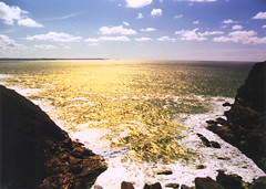 Tintagel Cornwall (rowmaster) Tags: sea film water coast rocks cornwall 135 tintagel c41