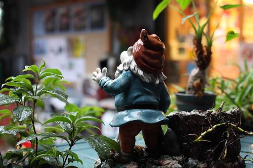 雨中的小矮人