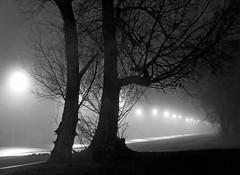 Foggy Road (JeffStewartPhotos) Tags: road street blackandwhite bw mist toronto ontario canada misty fog blackwhite foggy roadway portlands unwinavenue