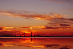 Sunrise over Tampa Bay (Michael Skelton) Tags: birthday morning bird animal sunrise landscape early tampabay florida saintpetersburg reflexions eastbeach ftdesoto sunshineskywaybridge shallowwater thesuperbmasterpiece michaelskelton michaeldskelton michaeldskeltonphotography