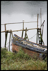 Barco abandonado (2minds4eyes) Tags: old sea bird water grass boat mar agua barco ship asturias viejo gaviota bote hierba