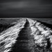 by chrisfriel