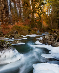 Abiqua Creek (Jesse Estes) Tags: ice creek icey abiquacreek jesseestes 5dii