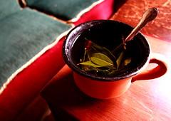Coca Tea - Cafe - La Paz - Bolivia