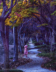 monita (Kris Kros) Tags: autumn trees winter fall girl beautiful beauty leaves photoshop walking point pretty child purple sweet path fairy mysterious kris lovely vanishing tale zigzag enchanted kkg cs4 monita kros kriskros kkgallery