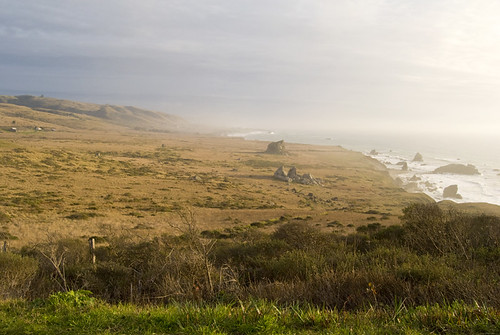 The Sonoma coast