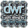 DWR Quilt Along