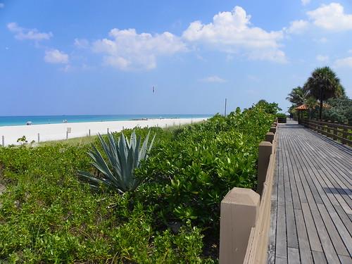 6.22.2009 Miami, Florida (142)