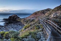 The Road Less Travelled (WilliamBullimore) Tags: nature landscape au australia victoria morningtonpeninsula capeschanck theroadlesstravelled explore181
