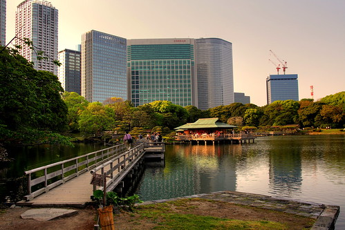 The Tea House at Hamarikyu Garden (2)