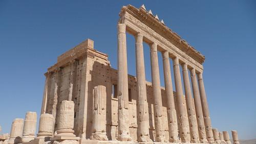 Palmyra 267