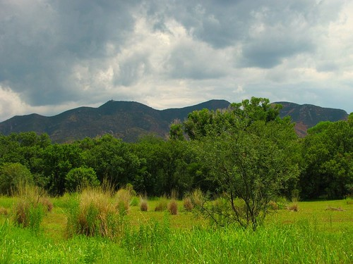 Sonoita Creek Preserve