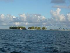 La pension du bout du monde (ManuB.) Tags: atoll frenchpolynesia fakarava polynésie polynésiefrançaise