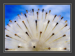 (0065) Der Brunnen vor dem Tore..... -         The fountain outside the gate.... (EnDe53) Tags: art water canon wasser iron kunst brunnen powershot distillery fontaine visualart eisen onlythebestareinthegallery 100commentgroup  urvision ennodernov mygearandmepremium mygearandmebronze mygearandmesilver mygearandmegold mygearandmeplatinum