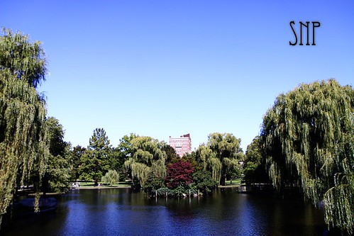 . public garden .