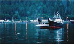 Auke Bay Boat Harbor (Jill Clardy) Tags: cruise alaska harbor boat dusk watching glacier 100views whale inside passage 2333