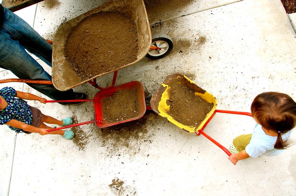 their three wheelbarrows