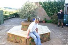 Olive Tree planter