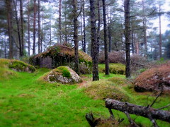 Galicia verde (Fotos de vida.) Tags: naturaleza verde landscape paisaje paisagem galicia montaa paysage landschaft lugo paesaggio maisema landschap pemandangan  paisatge landskap landskab  peyzaj krajobraz peisaj   pejza