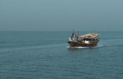 dhow (Khaldoon Saleh - Image Code) Tags: sea bahrain code image traditional kuwait bhr kw dhow q8 saleh khaldoon salehkhaldoonyahoocom imagecode imagecodekwgmailcom tel96566222815