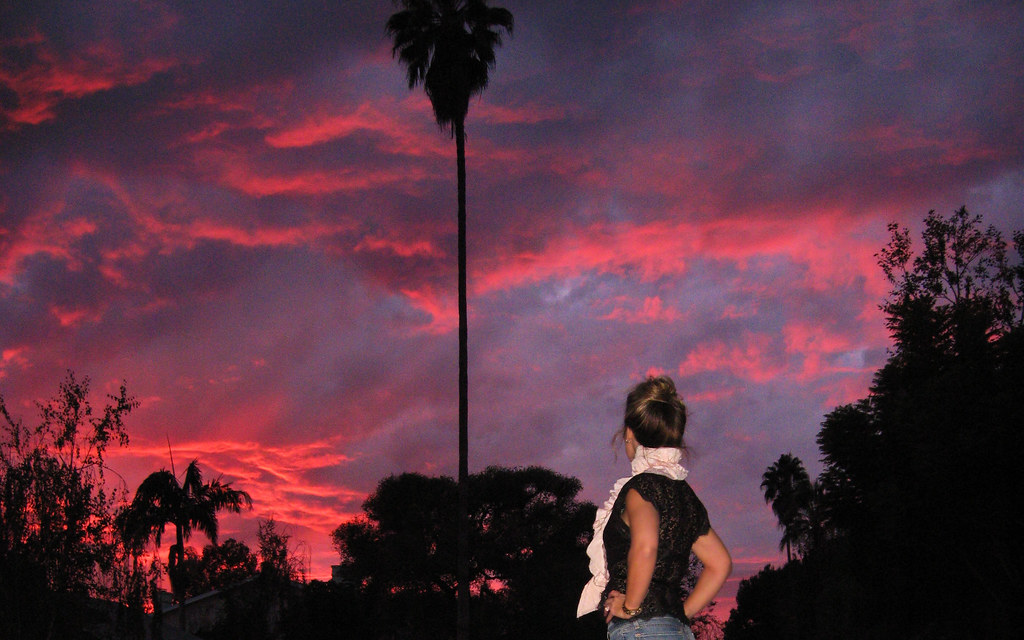 pink-purple-sunset-palm-tree-los-angeles