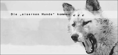 Iron-Dog-die-eisernen-Hunde-kommen