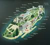 Alcatraz (14 of 37)