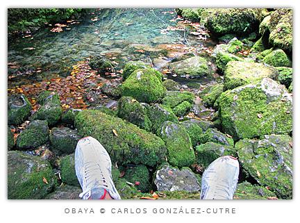 Obaya, Asturias