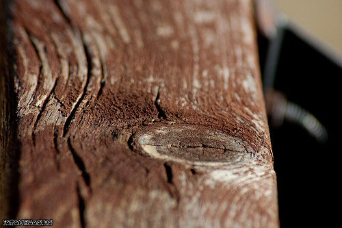 La edad de la madera