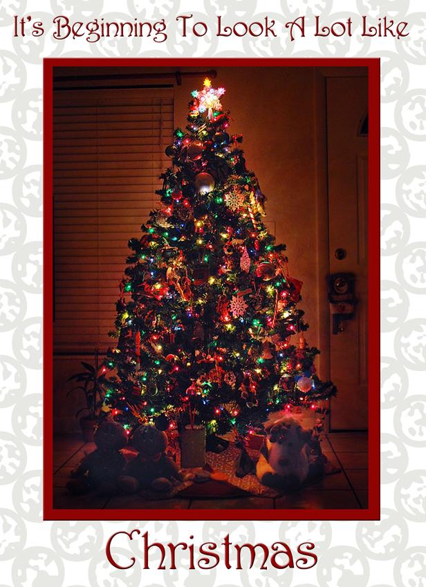 ChristmasTree2009
