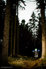 giaco of 77designz (wangapoa) Tags: bike bicycle nikon bad mountainbike downhill tokina adobe mtb d200 nano freeride manfrotto 535 lightroom atx 1b flatout elinchrom sb24 teuto iburg wangapoacom skyports 77designzde