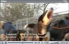 WDR-Beitrag-12-2009