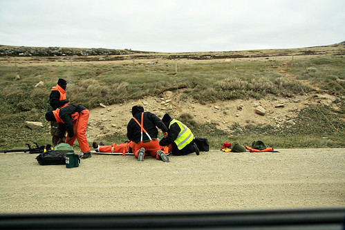 falkland islands 022 copy