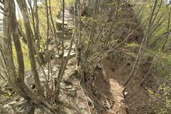 岩の尾根道