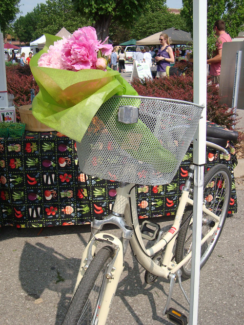 6-4-bike-and-flowers
