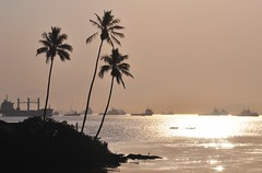 a lonely bird... (Ruby Ferreira ®) Tags: boats bay coconut coqueiros navioship savacu baíadaguanabararj savacubird