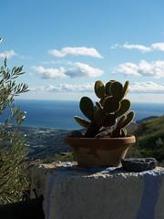 Los Caracoles (Jaap de Wit) Tags: holiday canon geotagged andaluca spain g6 andalusia 2008 malaga frigiliana axarqua