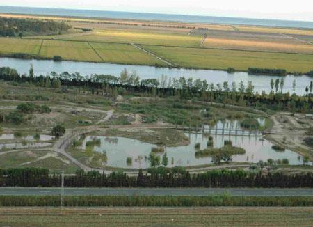 Excursión con niños al Delta del Ebro