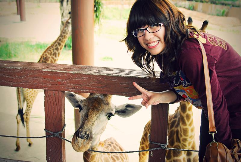 with giraffe
