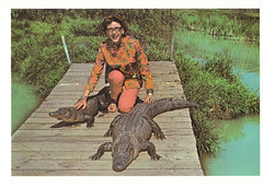Animal Reptile Kingdom, Route 66 Postcard (crayolamom) Tags: ranch woman usa oklahoma animal america vintage route66 reptile postcard north kingdom ok alligators reprint catoosa