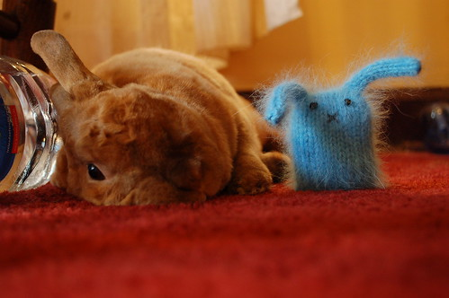 Derby Flopped, Fuzzy Blue Bunny Drooped