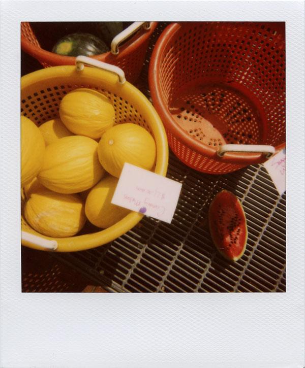 august: melon