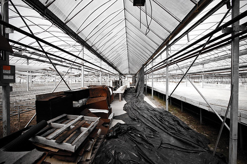 Greenhouse Junk