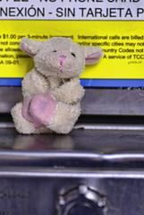Bahbahra saves the day (Singing With Light) Tags: ny fridge sheep pentax magnet jjp foregroundbokeh k200d bahbahra 2009challenge 2009challenge253