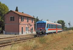 FER/ACT ALn 079 (maurizio messa) Tags: railroad fiat railway trains railcar bahn act mau fer emiliaromagna ferrovia treni automotrice nikond90 triebzuge r272 aln72422