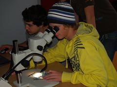 YiS – Youth into Science