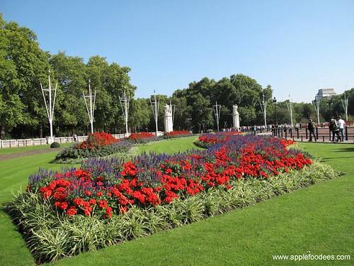 Buckingham Garden 2