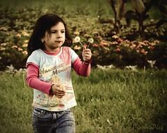 Small things.. biggg happiness.. (Prasanna S Krishnan) Tags: park chicago cute kids evening nikon kitlens toned pras d80 18135mm