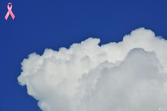 DSC_3370 (G1 Photo) Tags: blue sky cloud white hope louisiana flickr sensational nikkor breastcancerawarenessmonth potofgold fortpolk goldenmix oc6 concordians wonderfulworldmix nikond300 mallmixstaraward 1photo onephoto 1photooc6 pinkribbonsforawareness onephotooc6